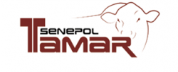 Senepol Tamar